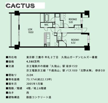 cuctus2